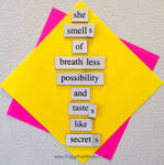The Daily Magnet #114