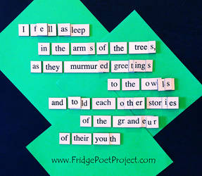The Daily Magnet #328 by FridgePoetProject