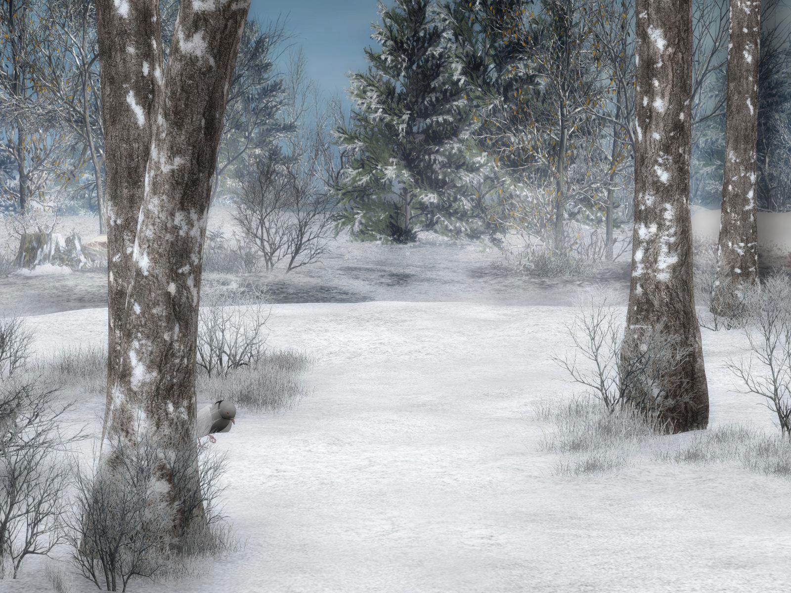 http://fc08.deviantart.net/fs7/f/2006/346/d/4/Winter_Background_4_by_BlackStock.jpg