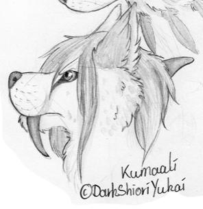 Kumaali Headshot by DarkShioriYukai