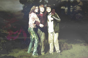 harry potter trio by abbygail14