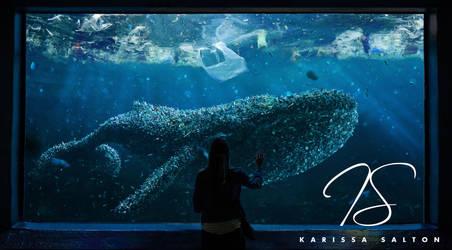 The Dumpback Whale