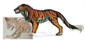 a canine tiger