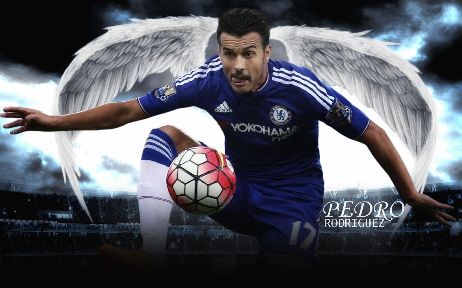 Pedro Rodriguez Wallpaper 2015-16 (CHELSEA) By ChrisRamos4