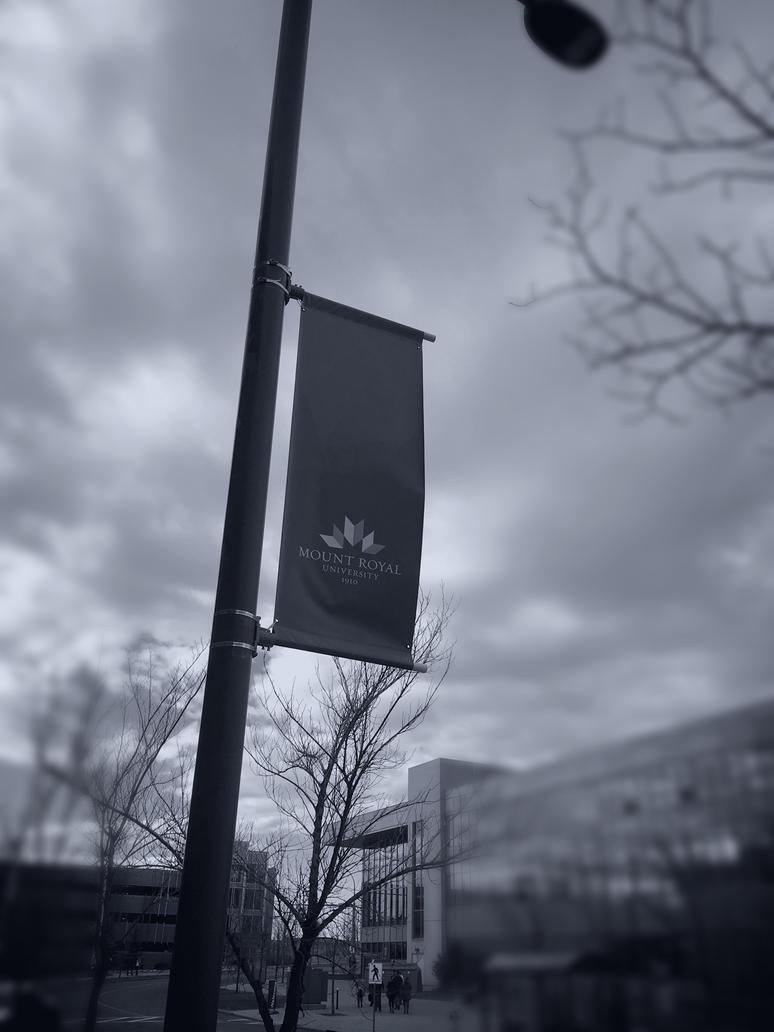 Mount Royal University by mathman1010