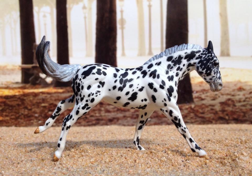 Leopard Appaloosa by darchiel