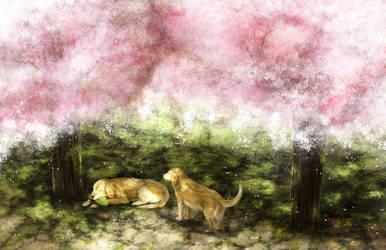 Kosuke and Sakura by ruina