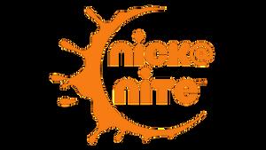 Fan-made Nick@Nite logo by THCDrawings