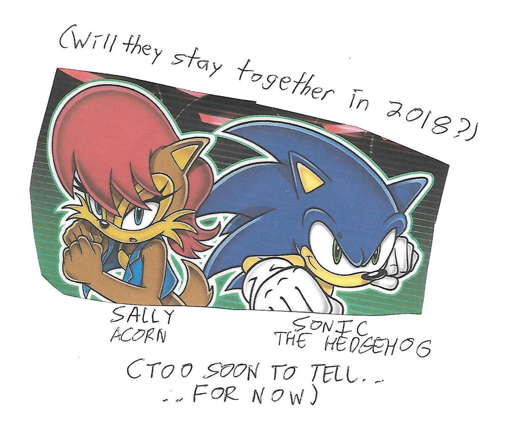 Will Sonic and Sally stay together in 2018? by dth1971