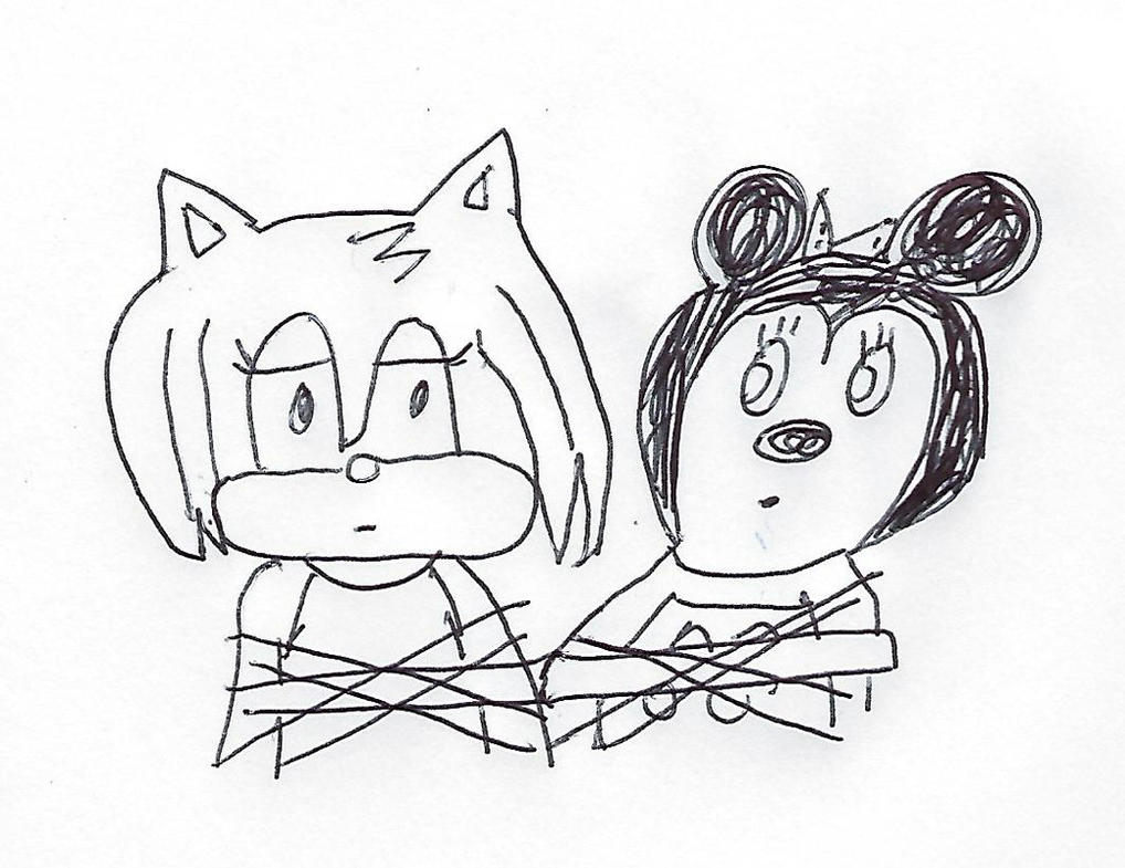 Amy Rose and Minnie Mouse tied up together by dth1971