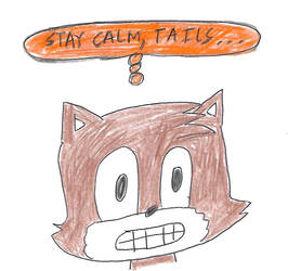 Stay calm, Tails by dth1971