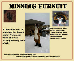 A Furry Friend in need of help