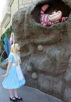 Alice in Wonderland: Which Way Should I go? by sarka1