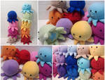 Rainbow Baby Octopi