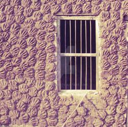 Window X 2012