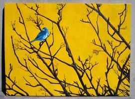Blue Bird by pageboy