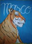 Tiger Marco