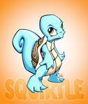 squirtle with bg