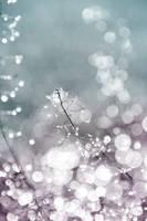 Light by J--B