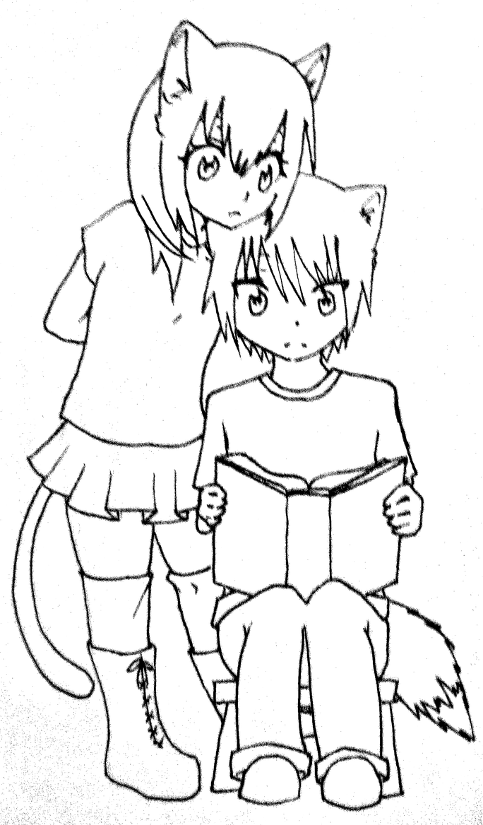 how to tell if boy or girl cat