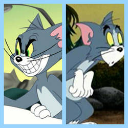 (CAT) Tom