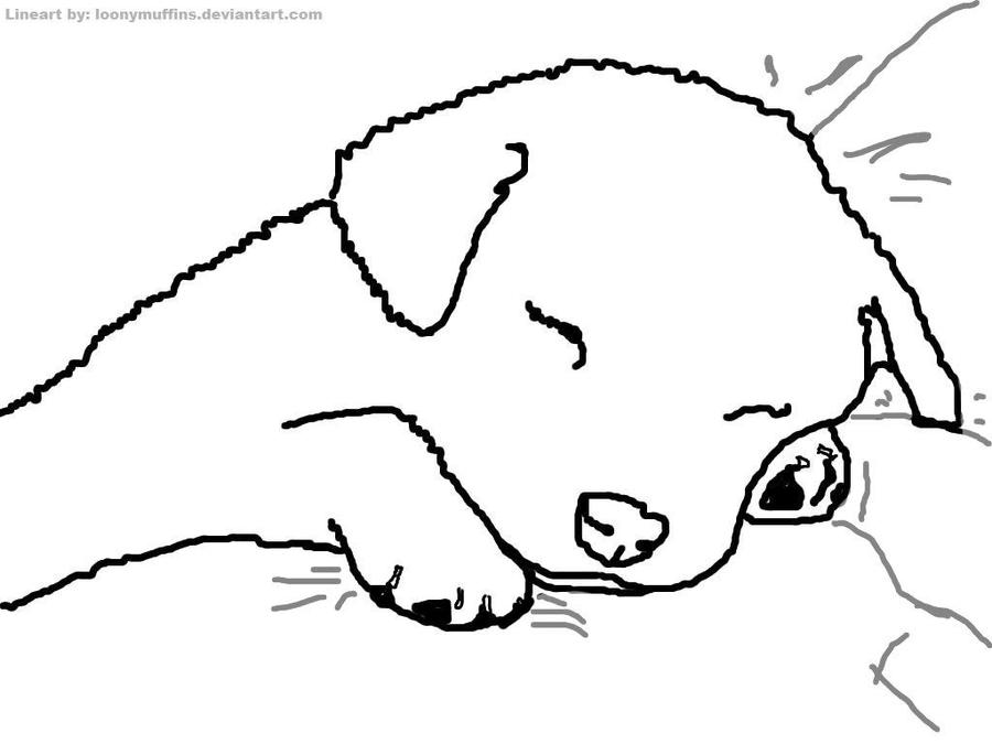 Line Art Dog : Dog lineart by loonymuffins on deviantart
