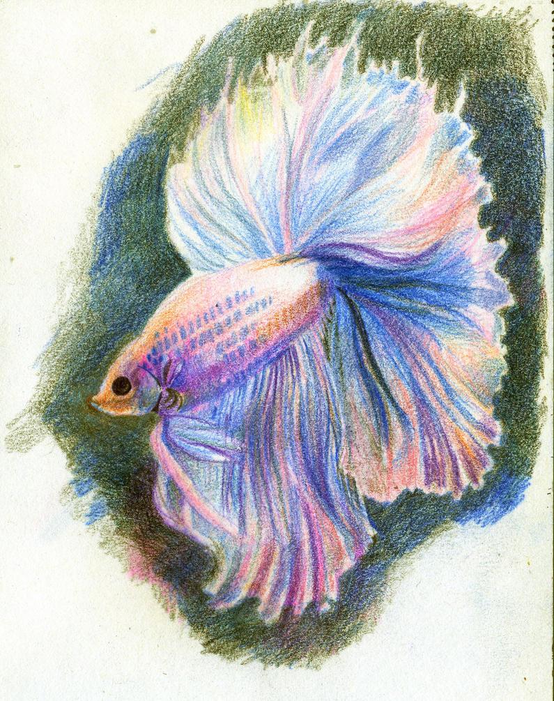 Fish by MarthaDeAth