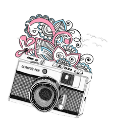 Camera Swirl