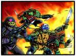 TMNT: Guerilla Warfare