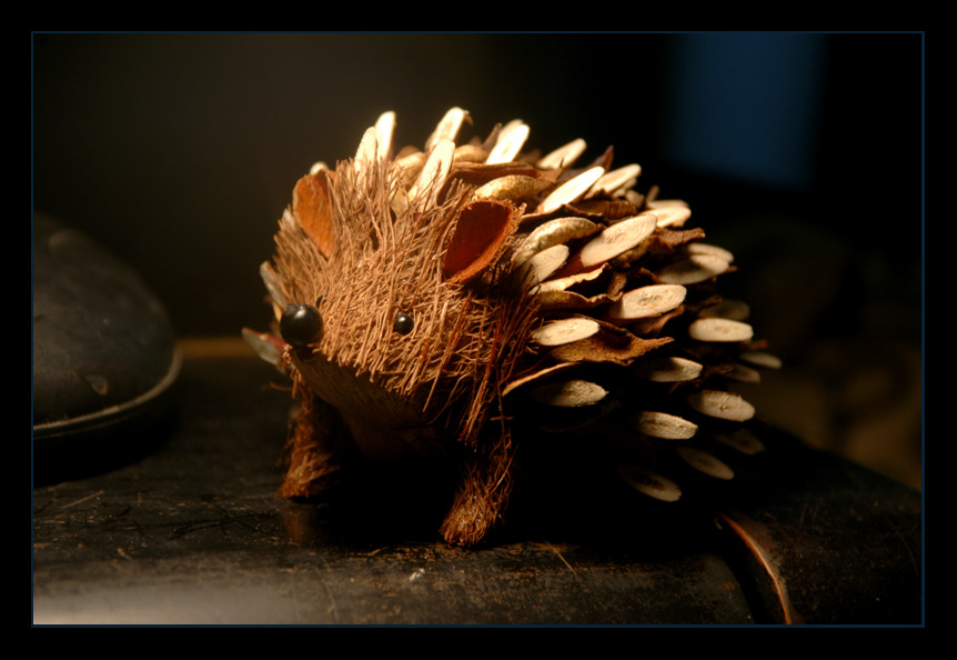 Hedgehog, hedgehog by LeafOfSteel