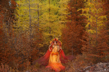 Sawsbuck - Autumn colours