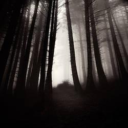 find me by EbruSidar