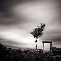 near the past by EbruSidar