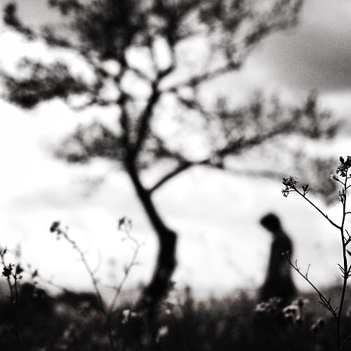 faraway by EbruSidar