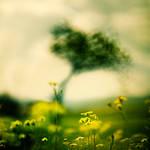 never ending story by EbruSidar