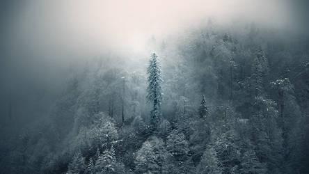 Cold Mountain by EbruSidar