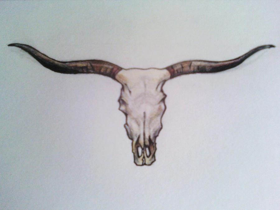 Texas Bull Skull Tattoos Designs