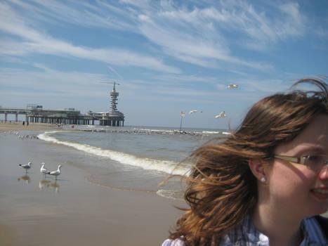 The beach breeze