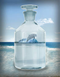 Dolfin In Bottle Copy by graphicraja