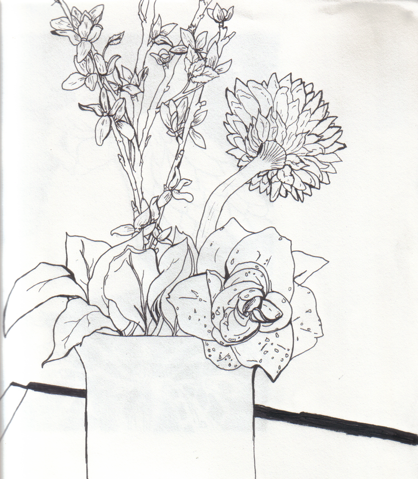 Contour Line Drawing Of A Flower : Line contour flowers by ribcagekitten on deviantart