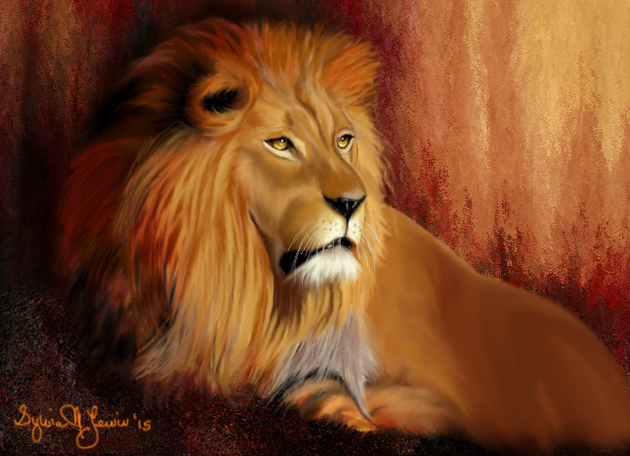Lion by Sillybilly60