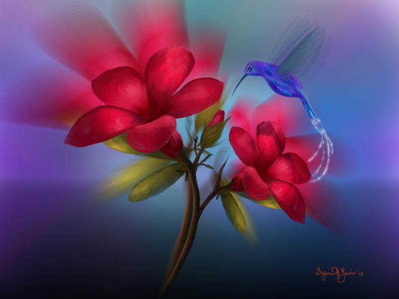 Hummingbird Fantasy by Sillybilly60