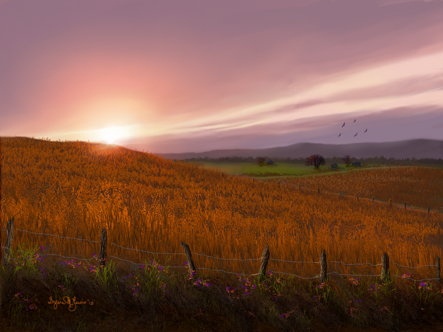Fields of Barley by Sillybilly60