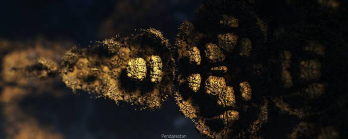 Pyrite Pod