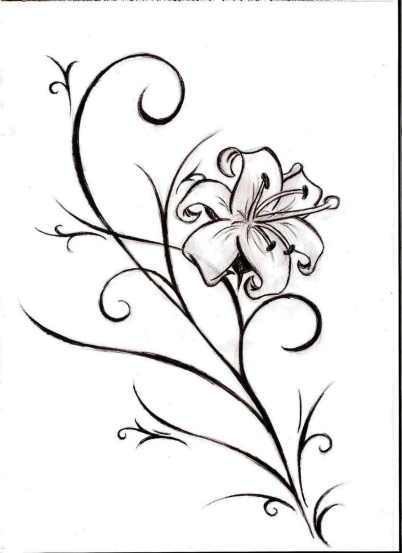 Line Art Lily : Lily by blackprincess on deviantart
