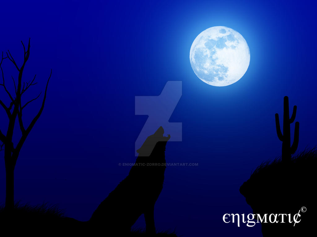 wolf howling at the moon by enigmatic zorro