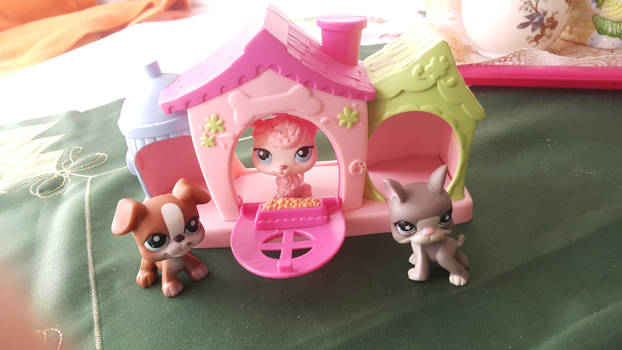 Lps Dogs sweet paw home