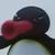 Pingu Angry Noot