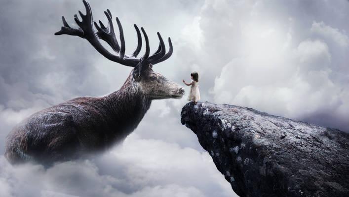 Sky Deer
