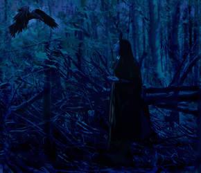 Calling The Raven by dixiekasilke